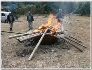bamboo2011
